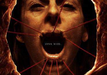 VIDEO-The Human Centipede (El ciempiés humano), una pelíclula de terror realmente inquietante.
